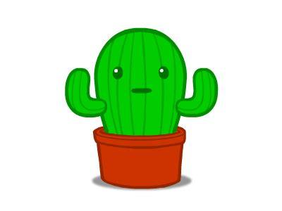 cactus  malo thubert dribbble