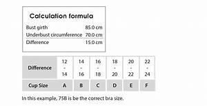 Bra Sizes  U2013 Taking Measurements  U203a M Mueller  U0026 Sohn