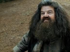 Image - Hagrid jpg - Harry Potter Wiki