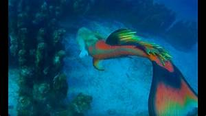 Mermaid Melissa Swimming In The Deep Ocean  U0026 Discovers