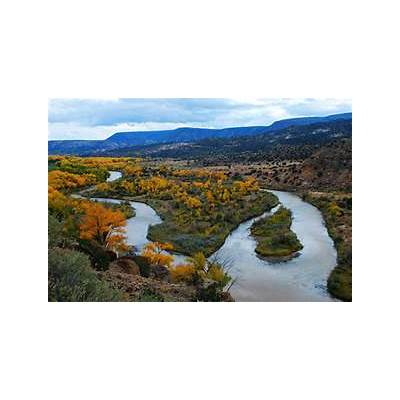 cottonwoods along the rio grande abiquiu new mexicoFlickr - Photo Sharing!