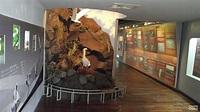 七股潟湖vs鹽博物館
