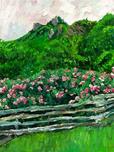 Grandfather Mountain in Spring