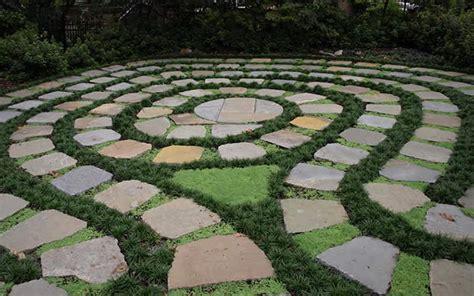 Buy Kyoto Super Dwarf Mondo Grass Ophiopogon Plants For