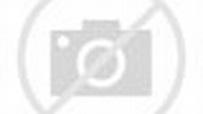 2014 08 20 南京青奧男子桌球4強 楊恆韋~樊振東 - YouTube