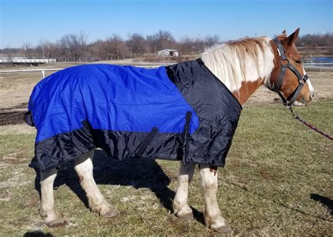 horse blanket draft waterproof denier turnout insulated 1200 blankets harness frontier saddle rug1