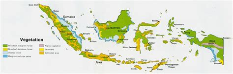 indonesia vegetation map printfree