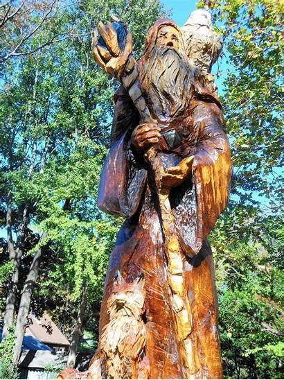 Wizard Tree Columbia 1023 Oakland Maryland