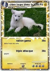 Bébé Loup Blanc : pok mon chien loups blanc lv x raillon gama ma carte ~ Farleysfitness.com Idées de Décoration