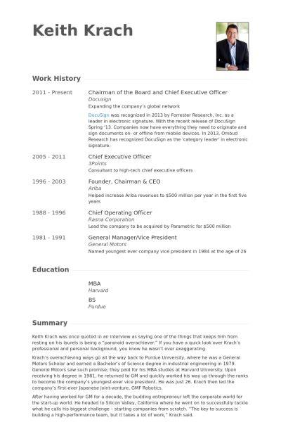 Economic Development Resume by Chairman Of The Board And Chief Executive Officer Resume