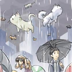 raining cats and dogs raining cats and dogs by johnsu on deviantart