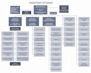 Flat Organizational Structure Diagram