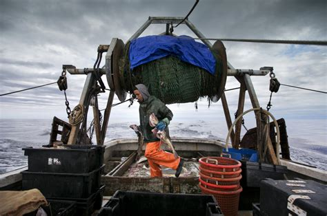 Fishing Boat Jobs In Maine by Climate Change Threatens To Sink Gulf Of Maine Fishing