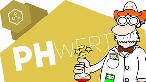 Ph Wert äquivalenzpunkt Berechnen : ph wert berechnen youtube ~ Themetempest.com Abrechnung