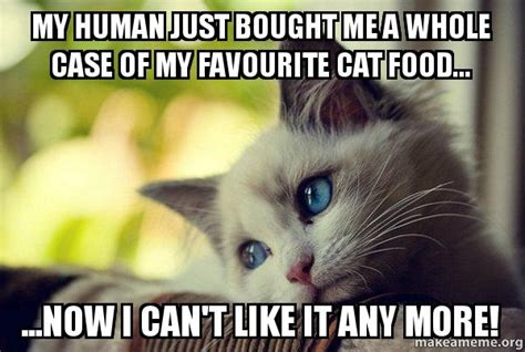 My Human Just Bought Me A Whole Case Of My Favourite Cat