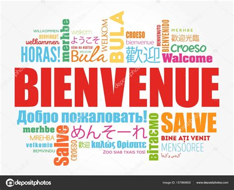 Bienvenue (Welcome in French) — Stock Vector © dizanna ...