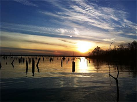 lake fork waterfront homes  sale