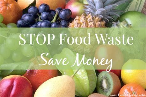 stop food waste save money
