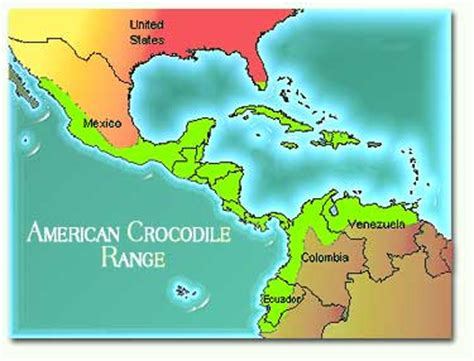 american crocodile range map tsweeney american crocodile thinglink