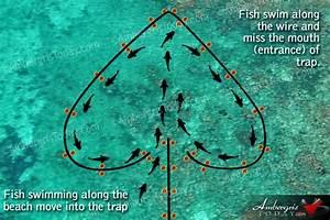 Dying Arts Of Fishermen