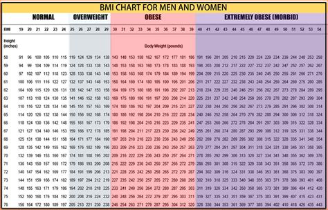 Bmi Index Chart Body Mass Index Body Mass Index