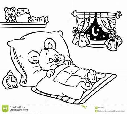 Sleeping Coloring Bear Pages Cartoon Illustration Night