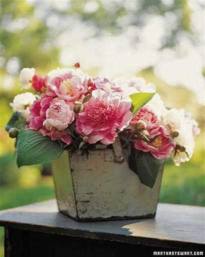 Arrangements Flower Pink Centerpieces Peony Flowers Arrangement