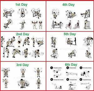 Longjack Bodybuilding Program