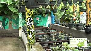Made Growing Systems Aquaponics Philippines  September
