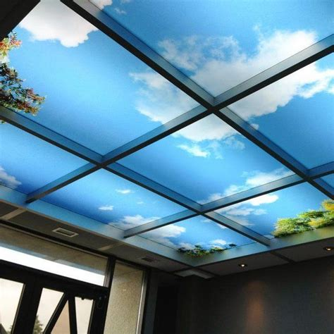 sky mural ceiling panels  order  transform  wall