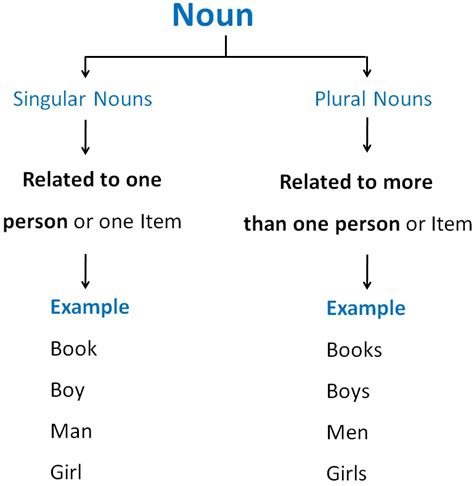What Are Singular And Plural Nouns?  Singular And Plural Nouns