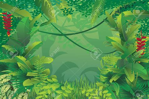 Rainforest Clipart Tropical Clipart Selva Pencil And In Color Tropical