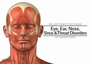 Eyes Ears And Venn Diagram : nclex exam eye ear nose sinus and throat disorders ~ A.2002-acura-tl-radio.info Haus und Dekorationen
