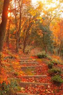 Most Beautiful Fall Scenery
