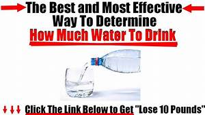 How Much Water Should I Drink To Lose Weight
