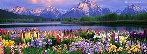 Beautiful Nature colorful flowers lake and mountains ...