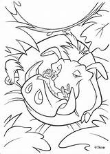 King Lion Coloring Pages sketch template