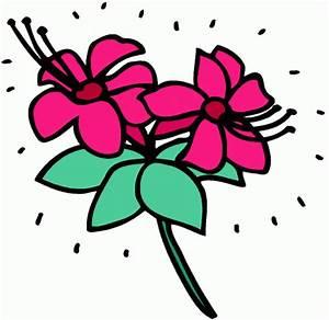Pflanze Mit Roten Blüten : pflanze mit roten blueten ausmalbild malvorlage gemischt ~ Eleganceandgraceweddings.com Haus und Dekorationen