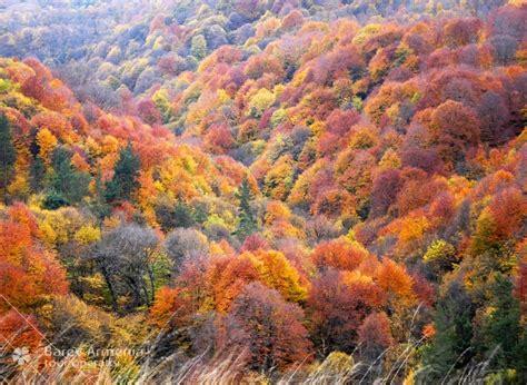 autumn holidays  armenia barev armenia tours