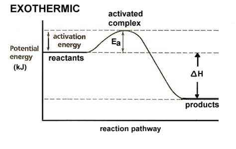 Equilibrium Endothermic And Exothermic Reactions