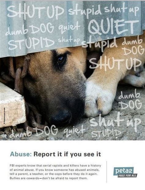 catchy animal abuse  cruelty slogans