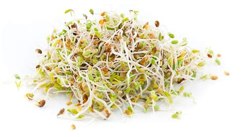 beans top top 8 health benefits of sprouts for weight loss