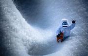 Wallpaper cinema, blizzard, snow, movie, animal, film ...