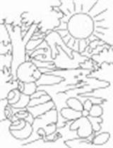 Ant Coloring Pages Hill Shelter Everywhere Water sketch template