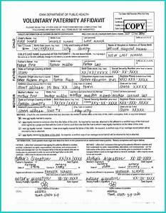 Paternity Affidavit Program Child Welfare Research And