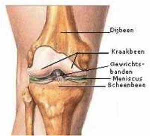 Pijn in knieholte: pijn aan