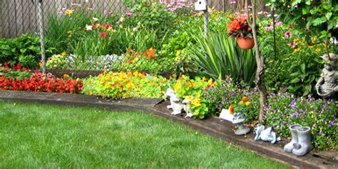 Types Of Gardens : Types Of Plants To Choose For Your Small Garden
