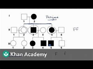 High Probability Chart Patterns Pedigrees Video Classical Genetics Khan Academy
