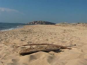Spiaggia Marina delle Rose Aglientu Sardegna Pleinair Campeggi e Villaggi in Sardegna