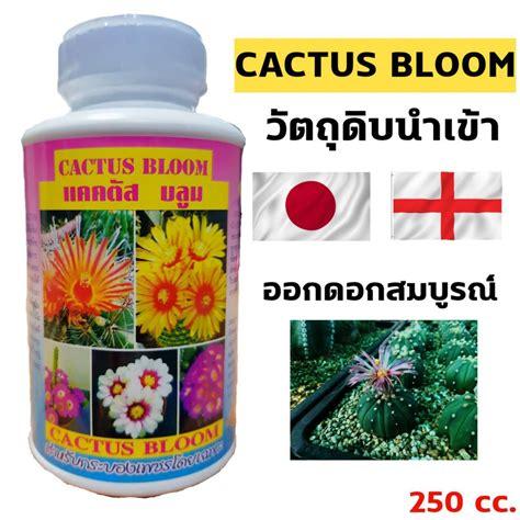 Cactus Bloom แคคตัส บลูม ปุ๋ยกระบองเพชร ปุ๋ยแคคตัส แคคตัสพลัส ปุ๋ยแคสตัส ปุ๋ยcactus 250cc (ขวด ...